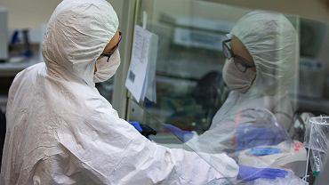 20 III 2020 r., Poznań, Instytut Chemii Bioorganicznej Polskiej Akademii Nauk. Badanie wymazów pobranych od osób, u których podejrzewa się zakażenie koronawirusem SARS-CoV-2
