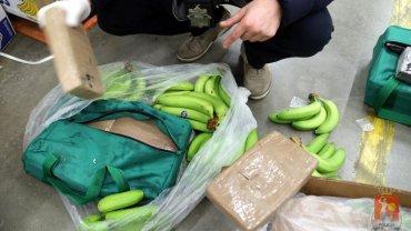 To jeden z największych udaremnionych przemytów w historii Polski. Narkotyki ujawnione w bananach warte są ponad 100 milionów złotych