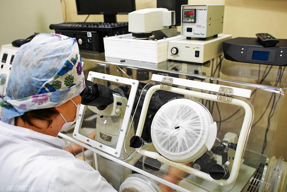 Zapłodnienie in vitro