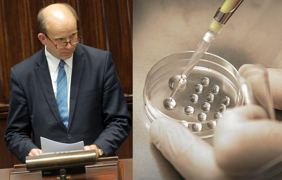 Konstanty Radziwiłł/in vitro
