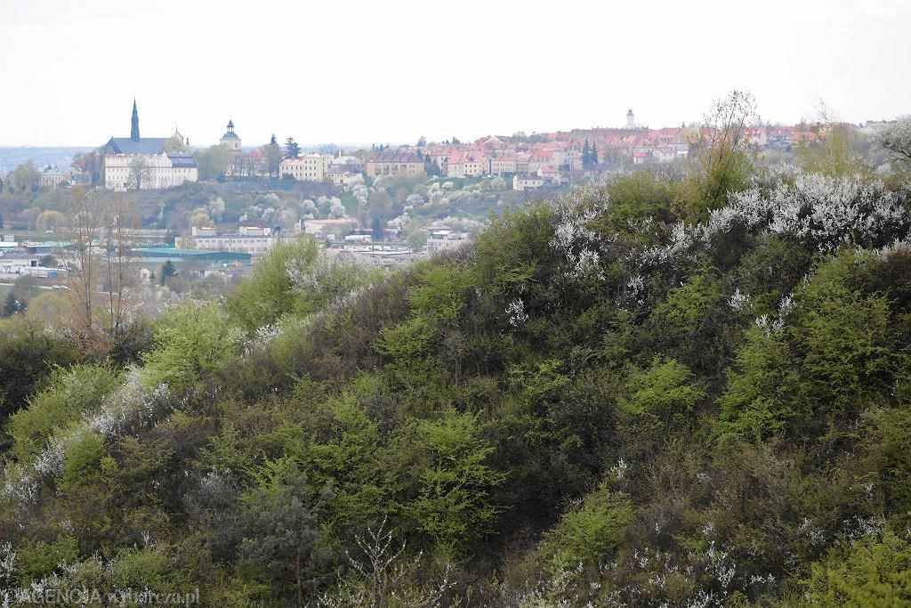 Sandomierz, Góry Pieprzowe