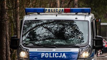 Radiowoz policji