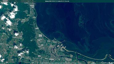 15 lipca 2019. Sinice w Bałtyku - zdjęcie satelitarne