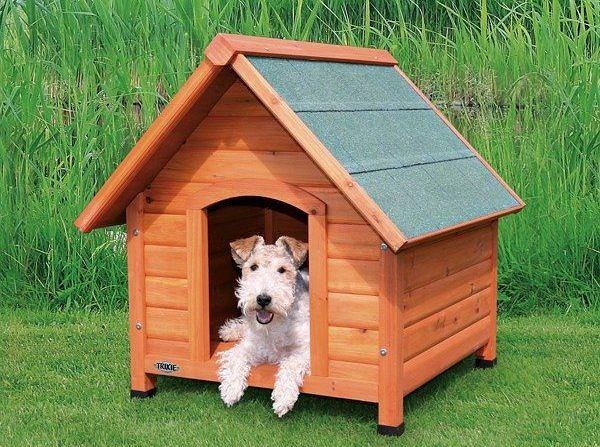 Klasyczna buda dla psa