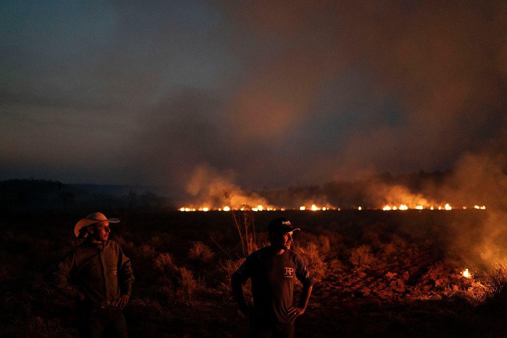 Brazylia. Pożary lasów Amazonii.