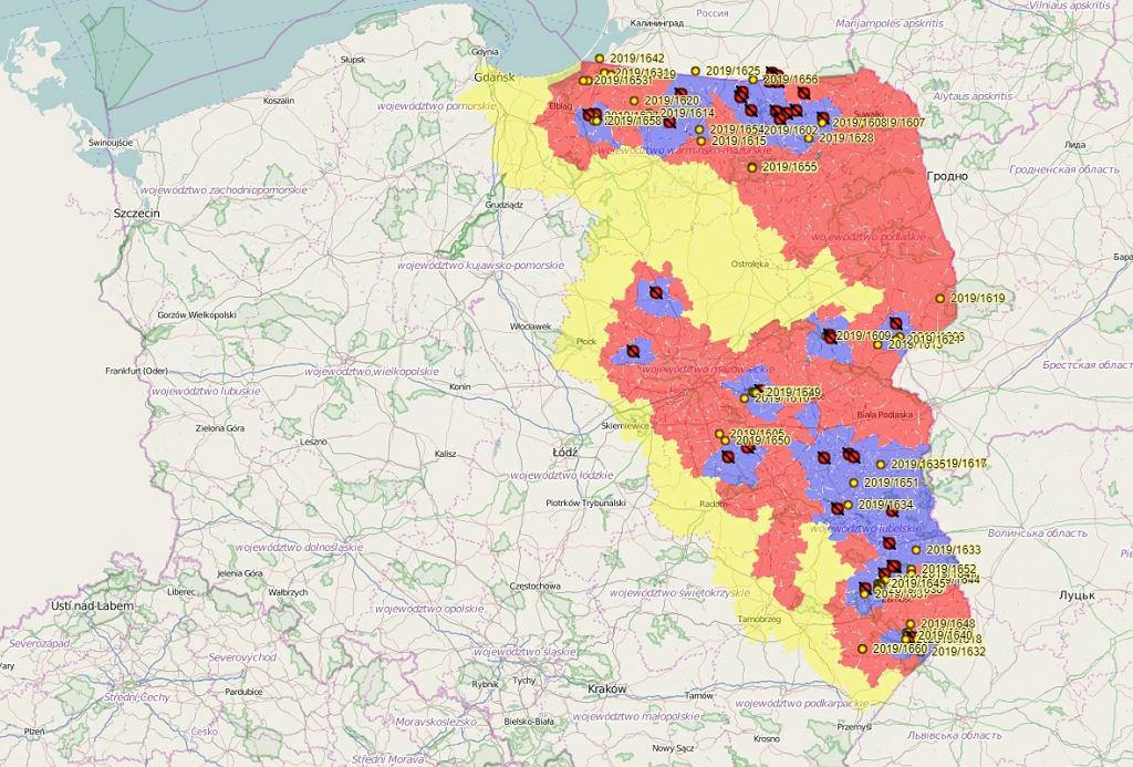 Mapa obszarów dotkniętych ASF