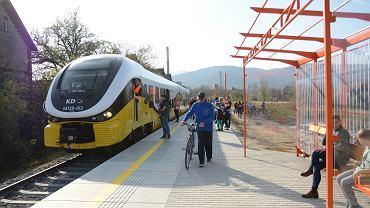 Na takie remonty torowisk i powrotu pociągów jak Bielawa - Dzierżoniów, nie ma szans. Krajowy Plan Odbudowy nie przewiduje na to pieniędzy.