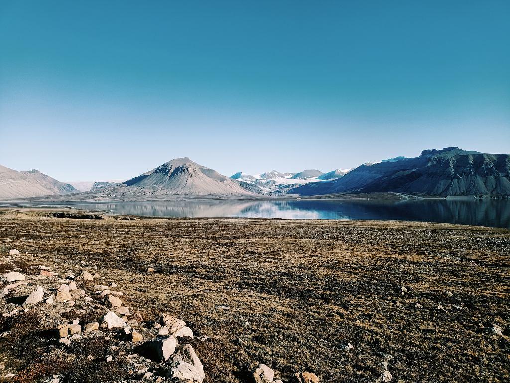 Arktyczna tundra w okolicach stacji polarnej UAM na Spitsbergenie.