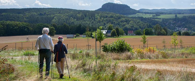 FAS: Niemcy uciekają na wcześniejszą emeryturę
