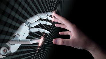 Naukowcy stworzyli żywe roboty