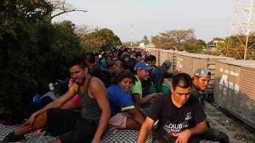 Imigranci zmierzający w stronę granicy Meksyku z USA.