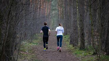 Spacerować po lesie można, ale trzeba pamiętać o szeregu zaleceń