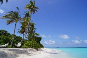 Malediwy nie muszą być drogie? Kilka sposobów, aby tam zaoszczędzić