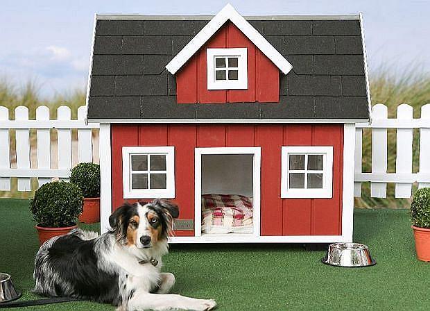 Buda dla psa w kształcie domu
