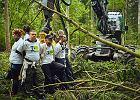 Jak Lasy Państwowe wspierają walkę z ekologami