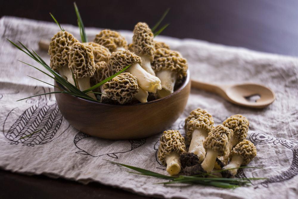 Smardze to grzyby znane i lubiane przez Polaków. Nic dziwnego, bo są wyjątkowo smaczne.