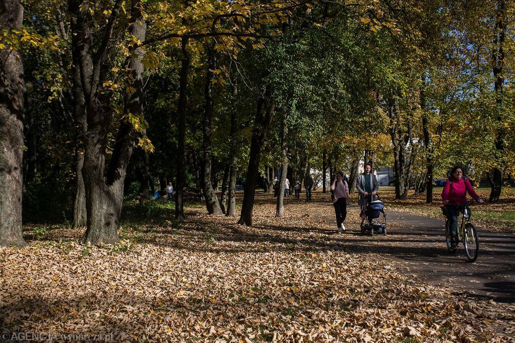 Pogoda na Zaduszki, 2 listopada. Nawet do 20 stopni Celsjusza, na wschodzie może popadać