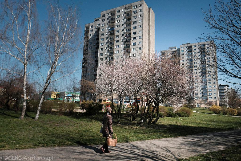 Rataje. Poznańskie osiedla wybudowane z wielkiej płyty