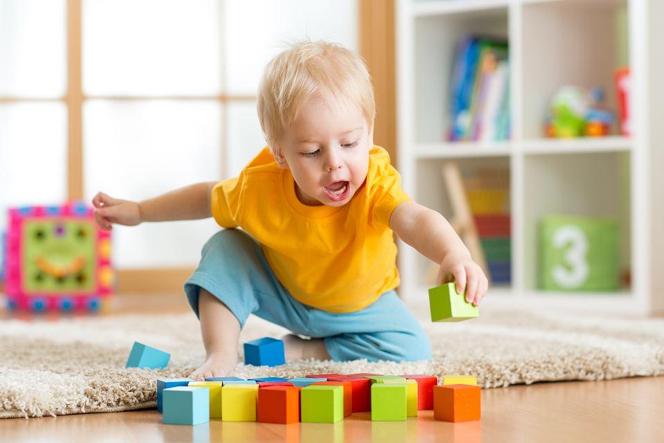 Już kilkumiesięczne dzieci uczą się liczyć