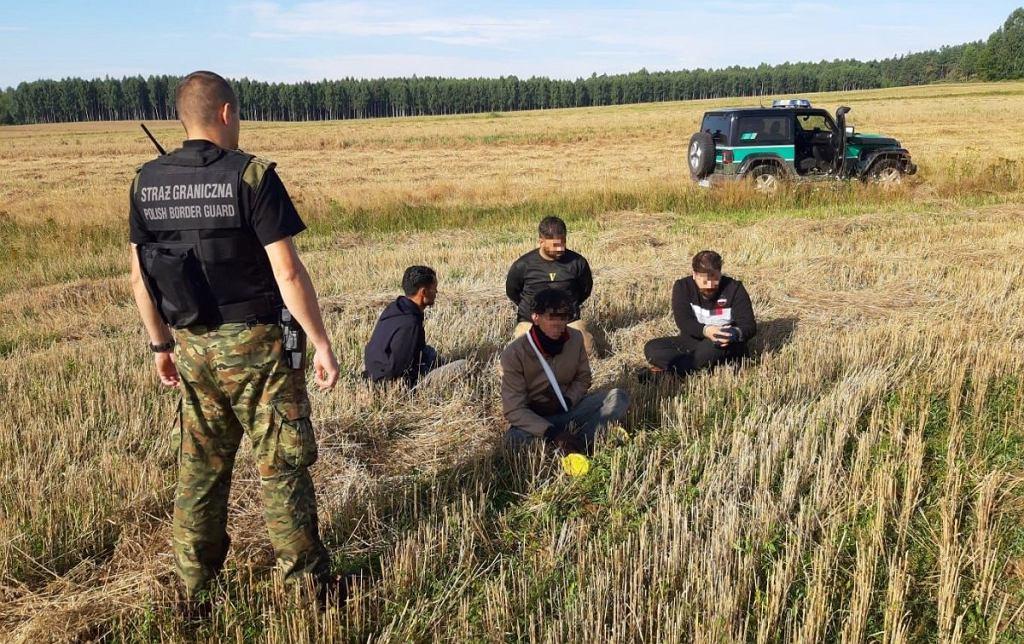 Straż graniczna. Od piątku 6 sierpnia funkcjonariusze Podlaskiego Oddziału Straży Granicznej zatrzymali 349 migrantów za nielegalne przekroczenie granicy z Białorusi do Polski