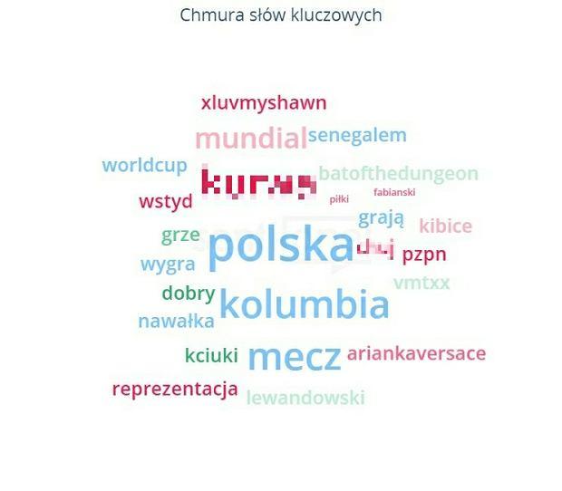 Chmura słów kluczowych, które padały w polskiej sieci o meczu Polska - Kolumbia