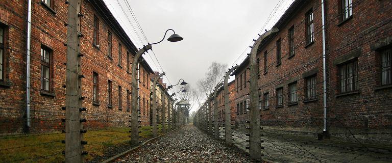 Kolejne odejścia z Rady Muzeum Auschwitz po nominacji dla Szydło