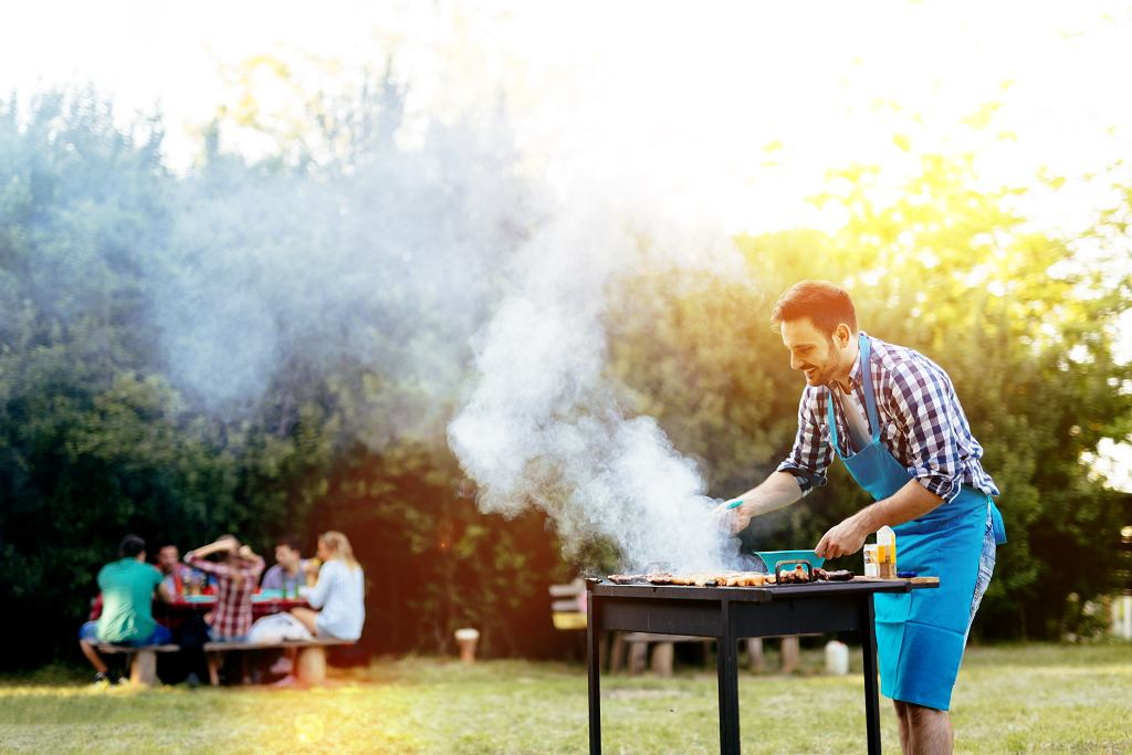 (Barbecue,In,Nature,Being,Done,By,Friends
