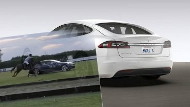 Tesla vs. koń w drag race