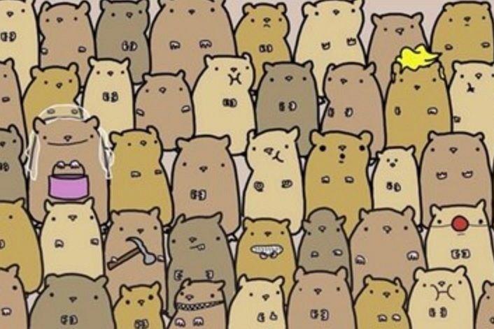 Gdzie jest ziemniak?