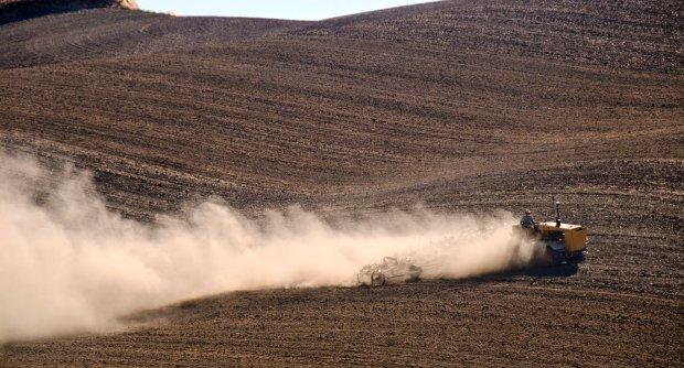 Rosję gnębi susza. Straty szacowane są na 7 mld rubli