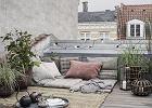 Rośliny balkonowe, które pomogą stworzyć egzotyczną oazę: top 10