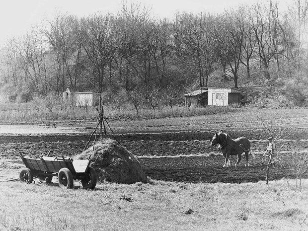 Wolica - dawna wieś, obecnie fragment warszawskiej dzielnicy Ursynów.