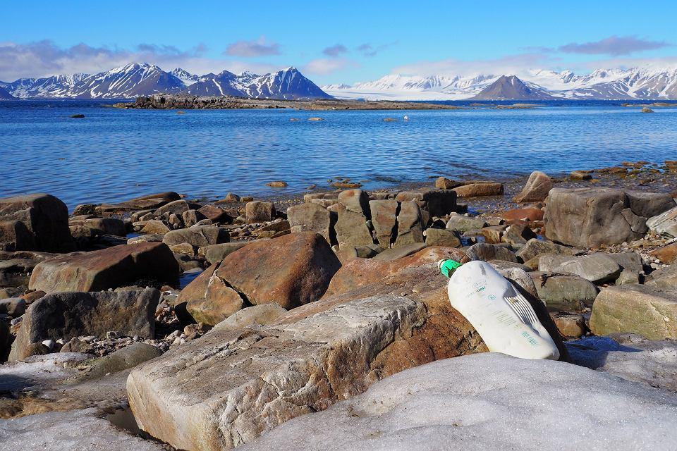 Śmieci na wybrzeżu Svalbardu