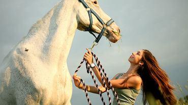 Jazda konna, koń, wakacje w siodle.