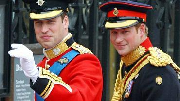Książę Harry i jego starszy brat William.