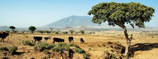 afryka, etiopia,Zykuala,  podróże