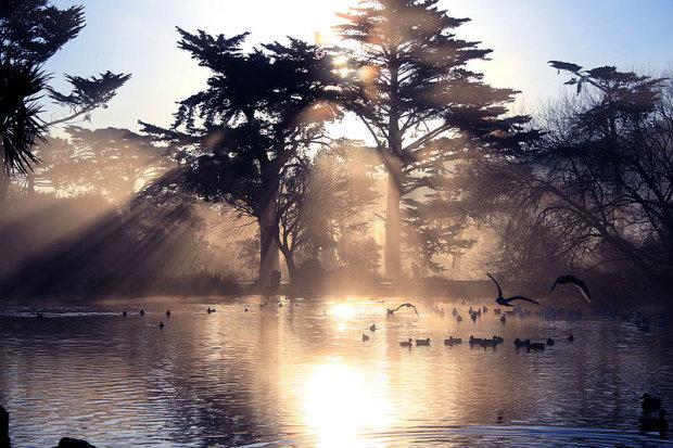 Park Golden Gate