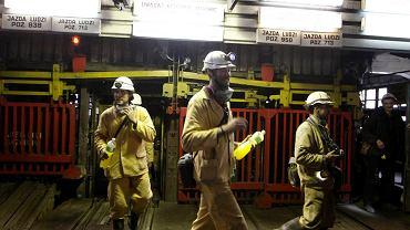 Siatkarze Jastrzębskiego Węgla w kopalni Borynia