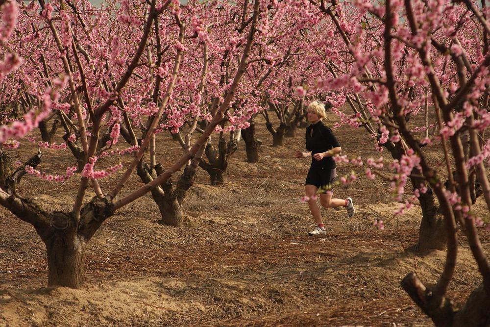 Bieganie wiosną
