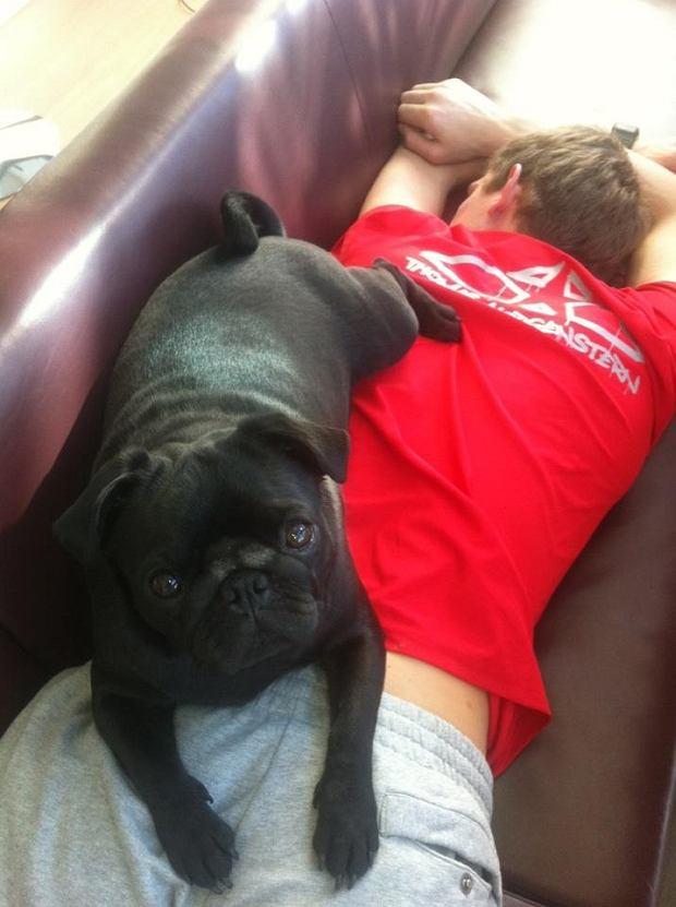Thomas Morgenstern i jego pies