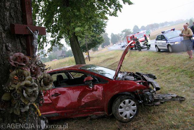Auto wypadło z drogi na łuku i uderzyło w drzewo stojące co najmniej 6 m od skraju drogi. Czy je też należy wyciąć? Czy w tym miejscu także nie ma można zamontować barier ochronnych?