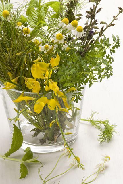 Dieta bogata w fitoestrogeny może łagodzić objawy menopauzy.