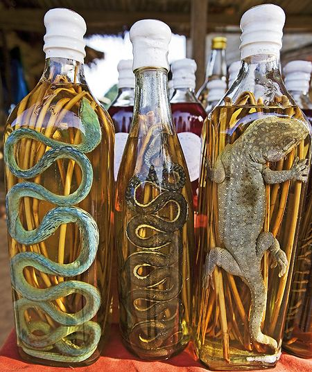Ze śliny, węża i robaków: dziwne alkohole. Wódki egzotyczne z egzotycznym