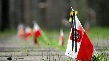 Cmentarz polskich żołnierzy w lesie katyńskim