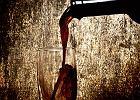 Madera - wyspiarskie wino