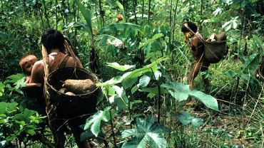 Indianie w amazońskiej dżungli