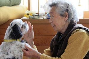 pies uratował staruszkę