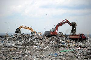 Przetarg na śmieci: Ratusz faworyzuje swoją spółkę?