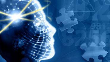 Regenerować mózg? Poznać wszystkie jego potencjalne możliwości? Naukowcy próbują...