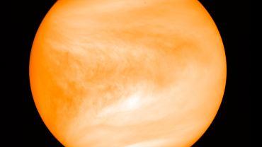 Wenus jednak bez śladów życia? Nowe badania wskazują, że na planecie nie ma fosfiny